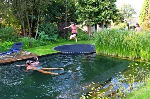 rectangle pool with trampoline into a pond like pool