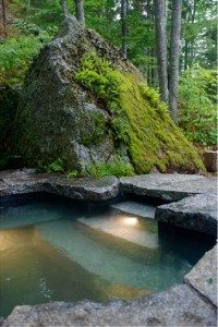 rectangle pool with natural look.
