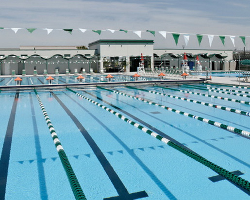 Florida Swimming Pools Pictures Swimming Pool Quotes