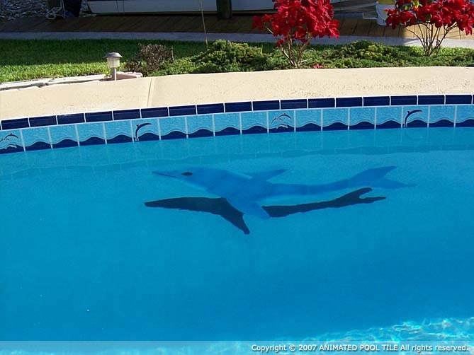 Florida swimming pools – pictures | Swimming Pool Quotes