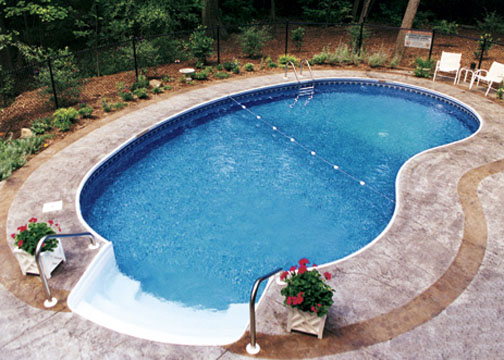 Kidney Pool Pictures Swimming Pool Quotes