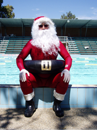 Four Reasons To Get A Pool For Christmas Swimming Pool